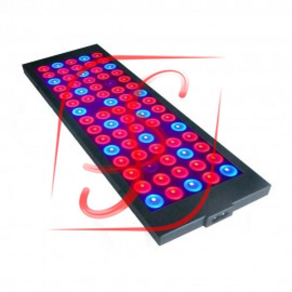 Фітосветільнік LED 10W Prosvitlo