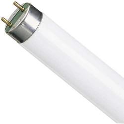 Лампа ЛБ-18